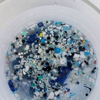 South Pacific Garbage Patch Has Lots of Plastic, No Fish