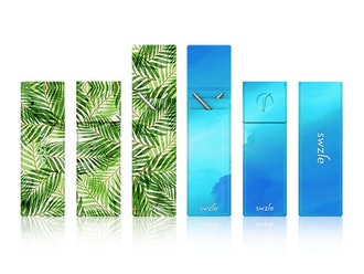 SWZLE Sustainable Straws & Case: 2-Pack (Palm Leaves, Blue Ocean)