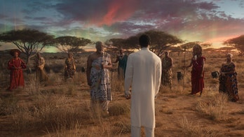 T'Challa visits the Ancestral Plane during 'Black Panther'.
