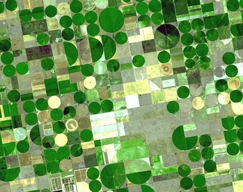 Crop circles in Finney County, Kansas, denote irrigated plots using water from the Ogallala Aquifer.