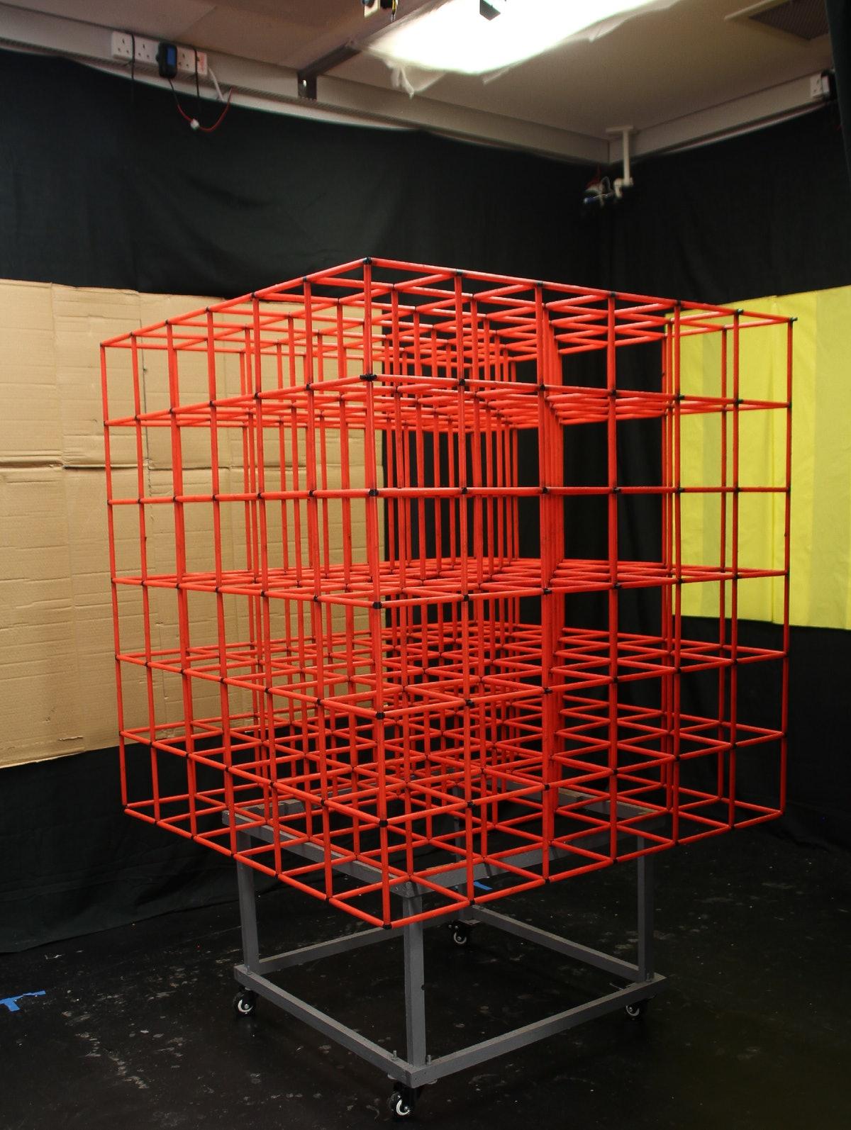 lattice,place-cell