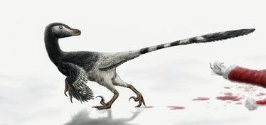 An illustration of a christmas Velociraptor, whose diet includes jolly men dressed in red.