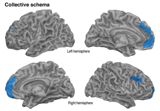 fMRI, collective memories, brain scans