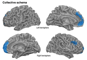fMRI, collective memories, brain scans