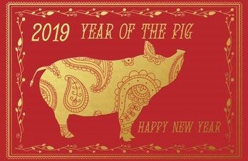 Year Of The Pig 2019 Free Stock Photo - Public Domain Pictures