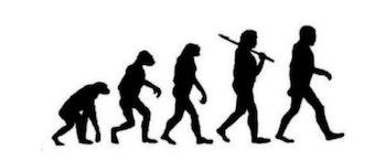 march of progress animal ape nour kteily racism