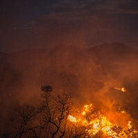 Fires Will Continue to Ravage, the Media Can Change the Worsening Trend