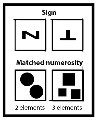 bees signs symbols