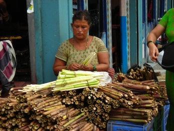 A woman sells bamboo shoots in Pokhara, Nepal.