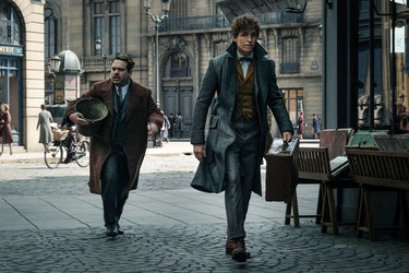 Fantastic Beasts Crimes of Grindelwald Newt Scamander