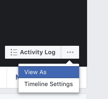 Facebook View As feature