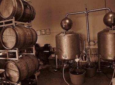 Distilling Moonshine