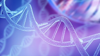 A DNA double helix.