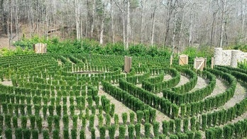 An early photo of John B. McLemore's hedge maze in Woodstock, Alabama.