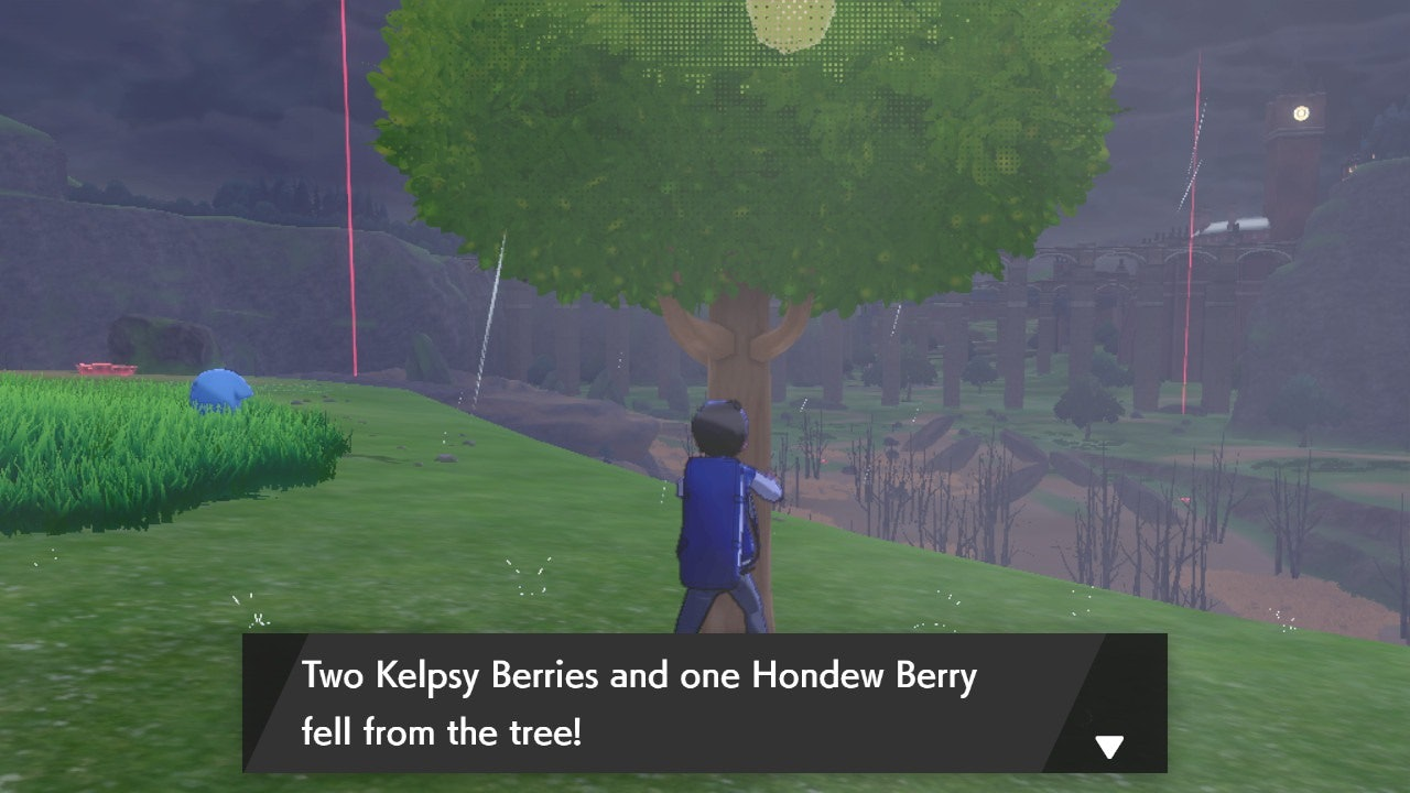 Berries Pokemon Sword and Shield