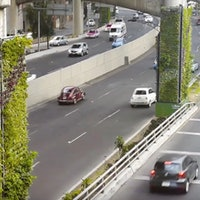 Video Shows Mexico City Transform Its Highways Into 1,000 Vertical Gardens
