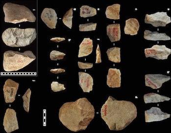 ancient stone tools, homo erectus.