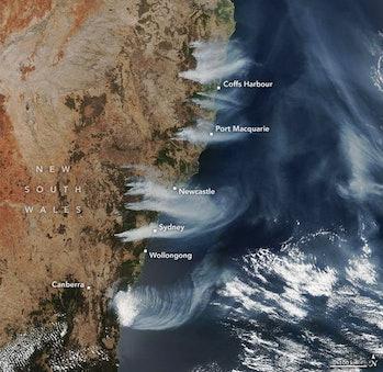 A satellite image showing fires burning on Australia's east coast.