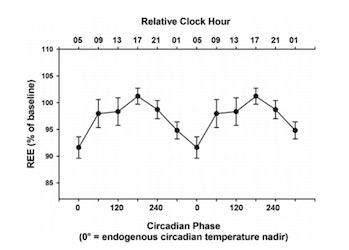 calorie burning circadian clock