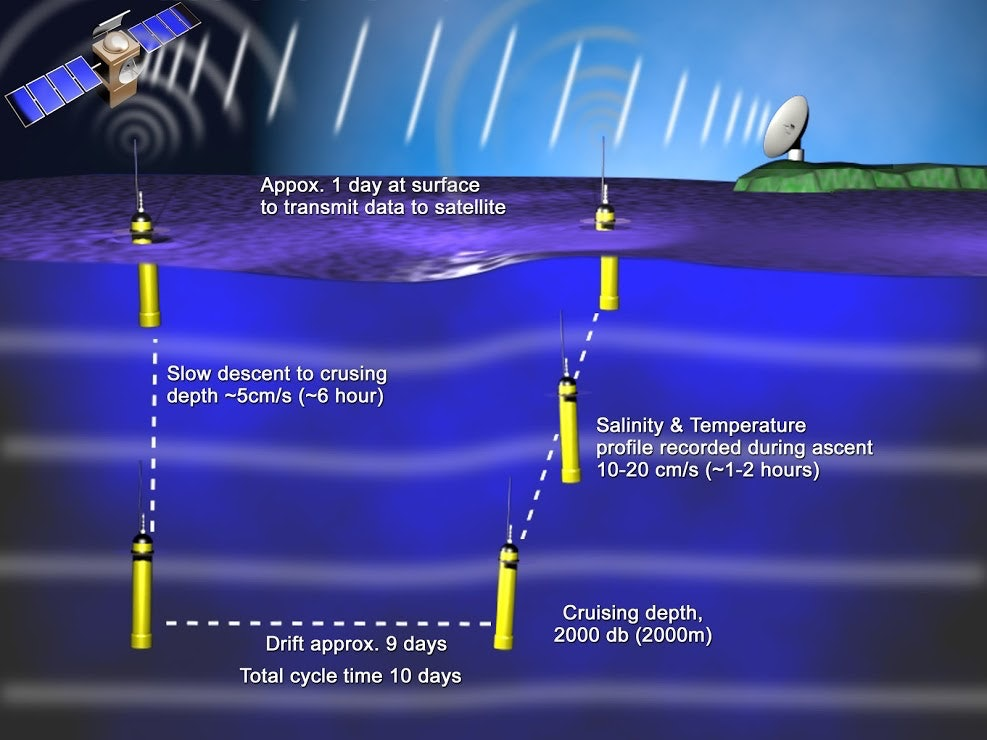 Normal cycle of an Argo float collecting ocean temperature and salinity data.