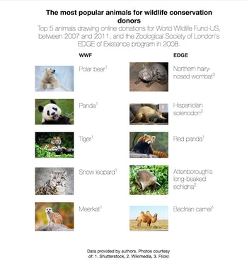 The Conversation animal conservation donation