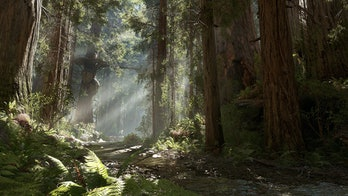 The forest moon of Endor.
