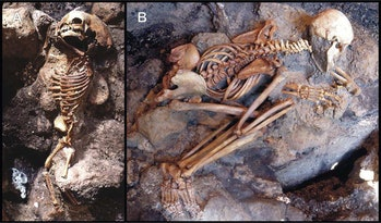 "A child (A) and an adult male (B) don't show signs that they tried to defend themselves, suggesting that death came quickly for them. Additionally, they show minimal signs of a ""pugilistic attitude,"" which happens when muscles contract during heating. This suggests that the victims' muscles vaporized before they could fully contract."