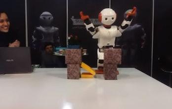 robot karate chop tehran iran mini