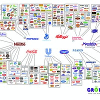 Ten Brands Control Everything We Eat