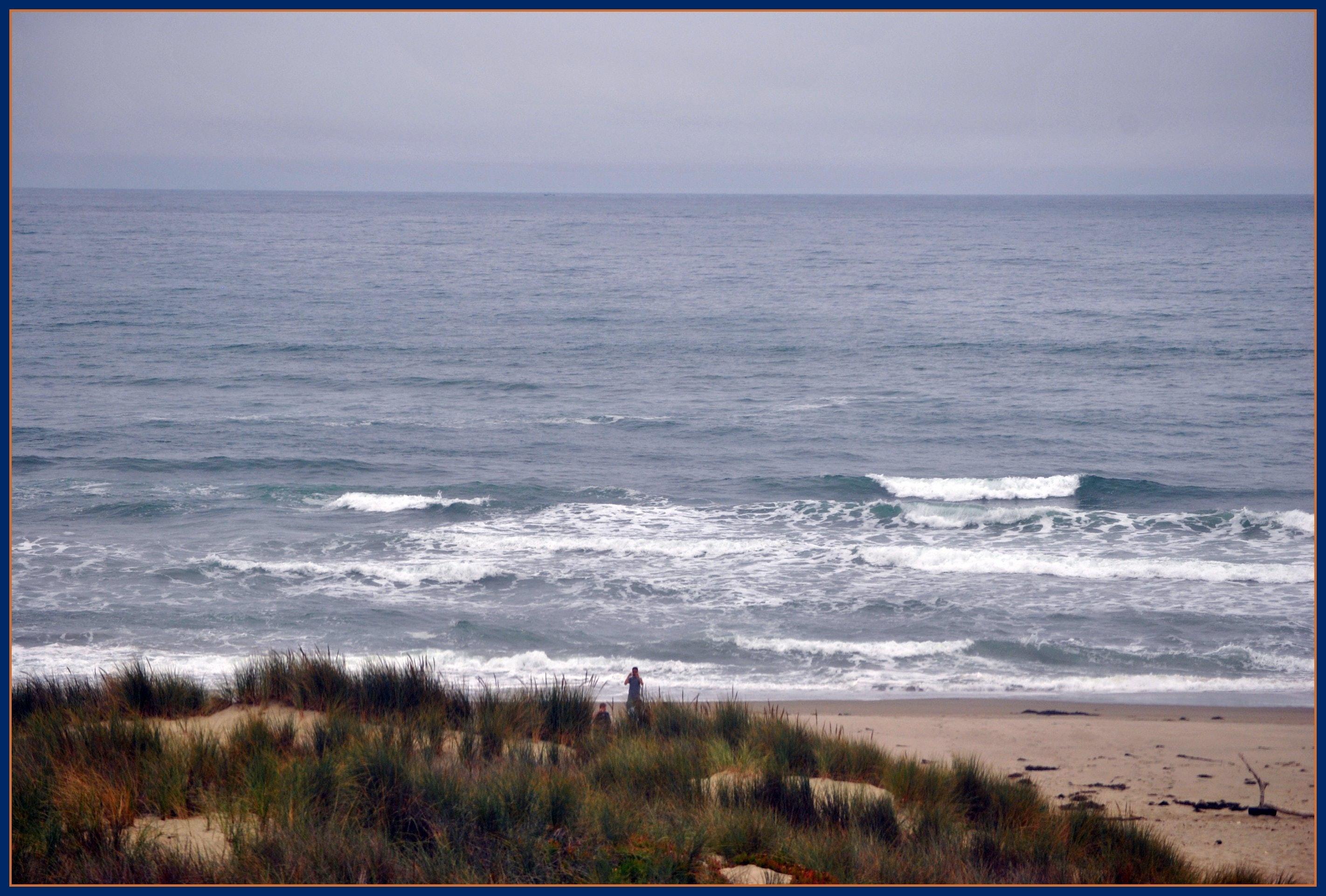 Surf Beach California Is An Epicenter