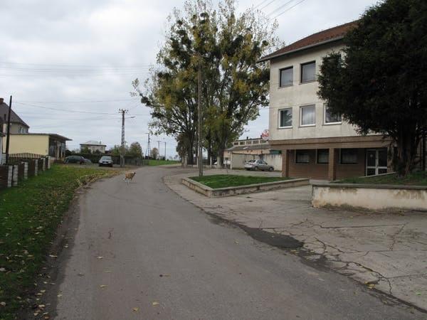 Miejsce Odrza