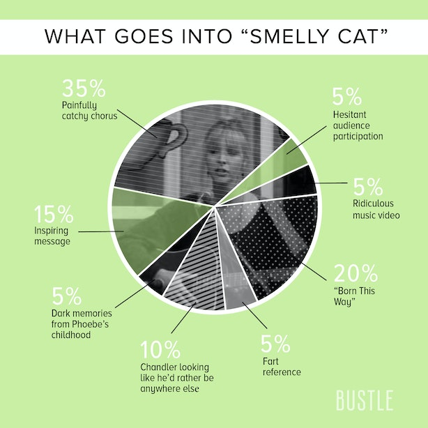 Smelling Cat It S Not Your Fault