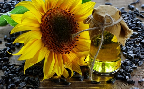 These sunflower oil benefits for skin and hair will have for Fish odor syndrome natural remedies