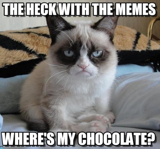National Chocolate Cake Day Meme
