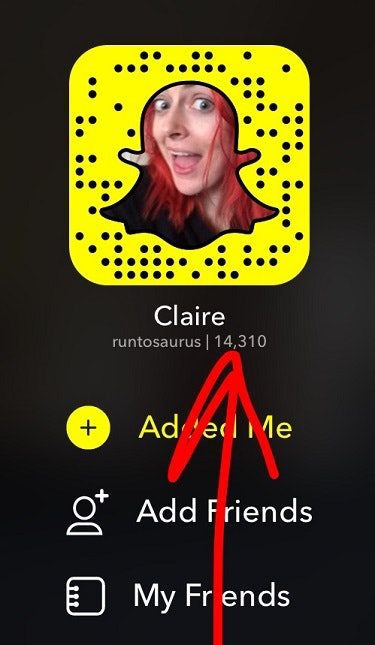 does your snap score include chats