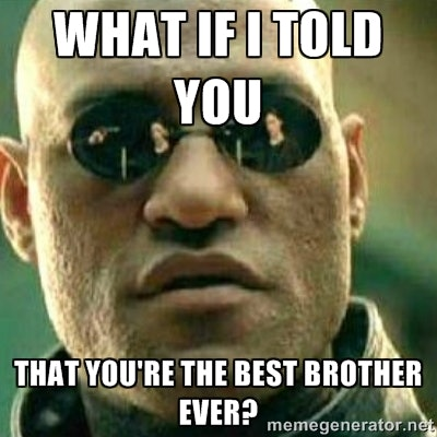 8 Funny Brother Memes For National Sibling Day That Capture The