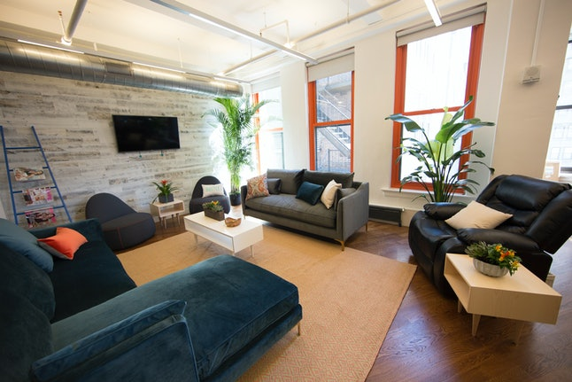 Bustle\'s Office Got A Green Makeover — Here Are The Before & After ...