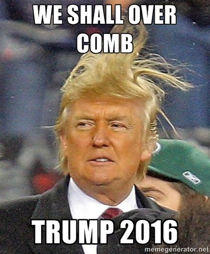 16 Donald Trump Hair Memes So Funny You'll Actually Be ...