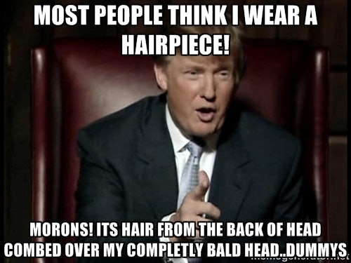 16 Donald Trump Hair Memes So Funny Youll Actually Be Grateful Hes