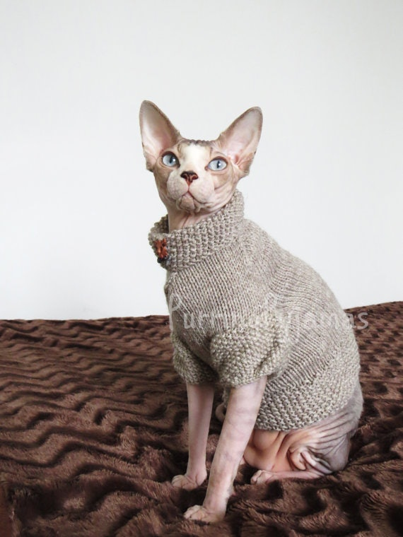 13 Adorable Outfits And Accessories For Your Cat Because Youre 100