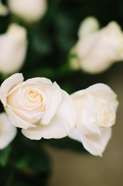 16 Inexpensive Wedding Flowers That Still Look Beautiful For Couples