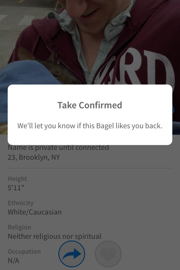 coffee meets bagel rematch
