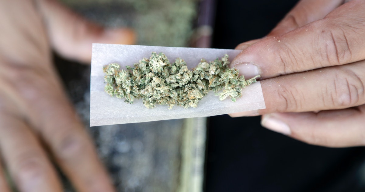 Indica vs. Sativa: What's the difference, how to identify them and which is better for you