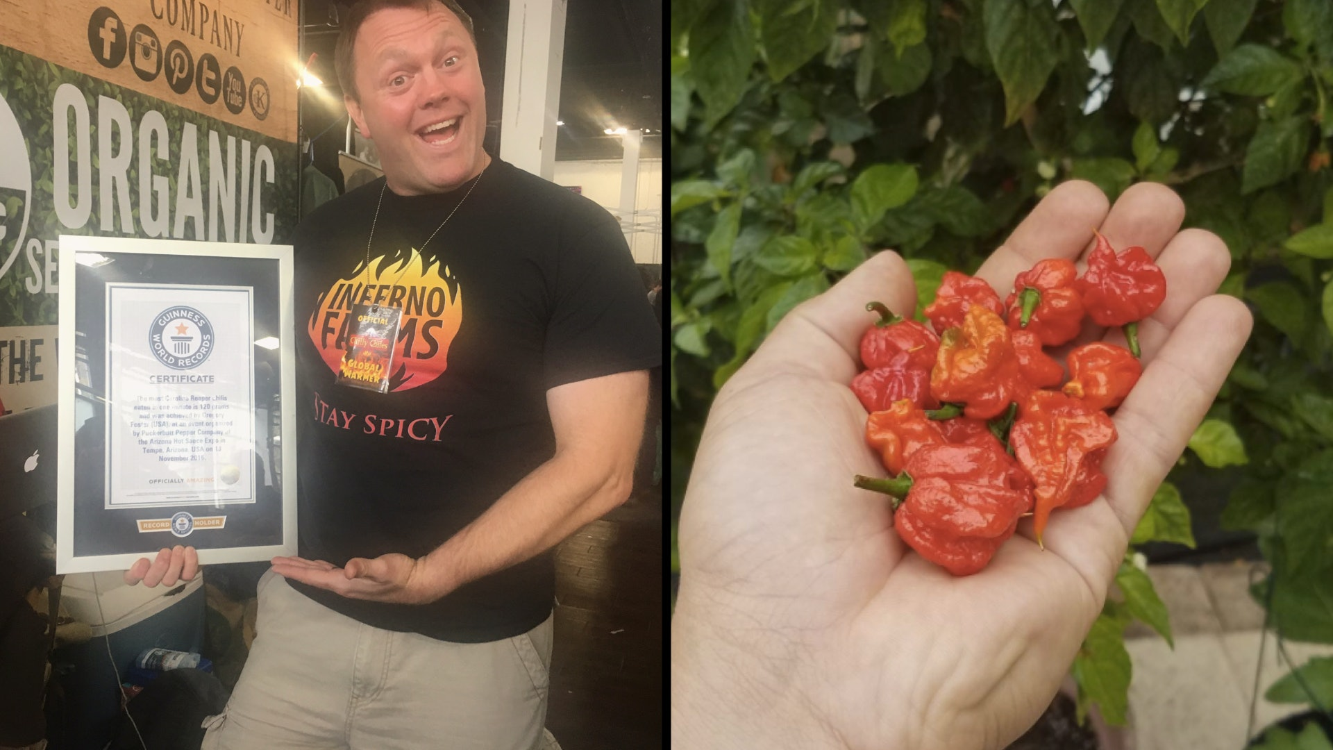 How to survive the world's hottest pepper, according to the