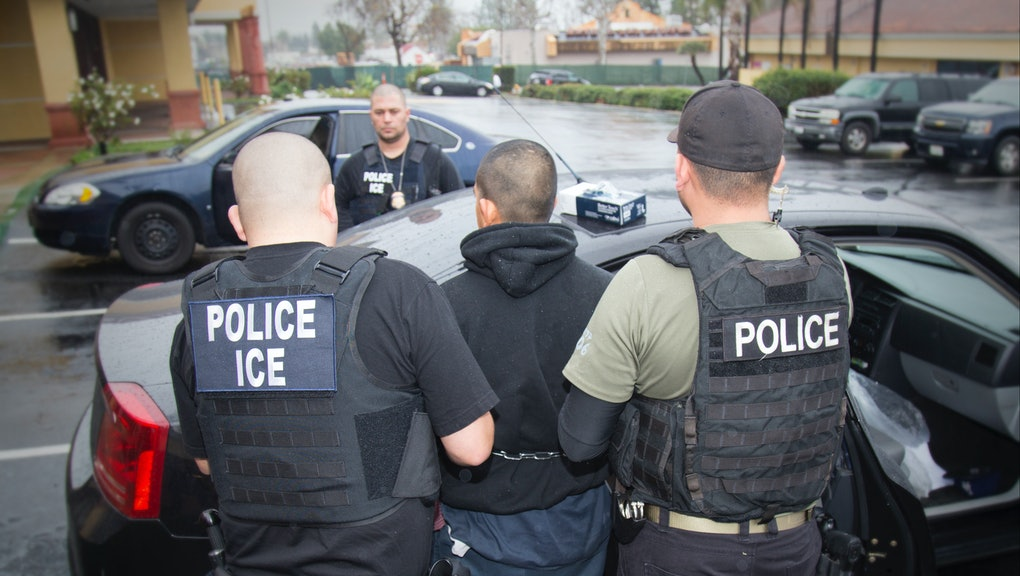 Half of immigrants arrested in February had traffic
