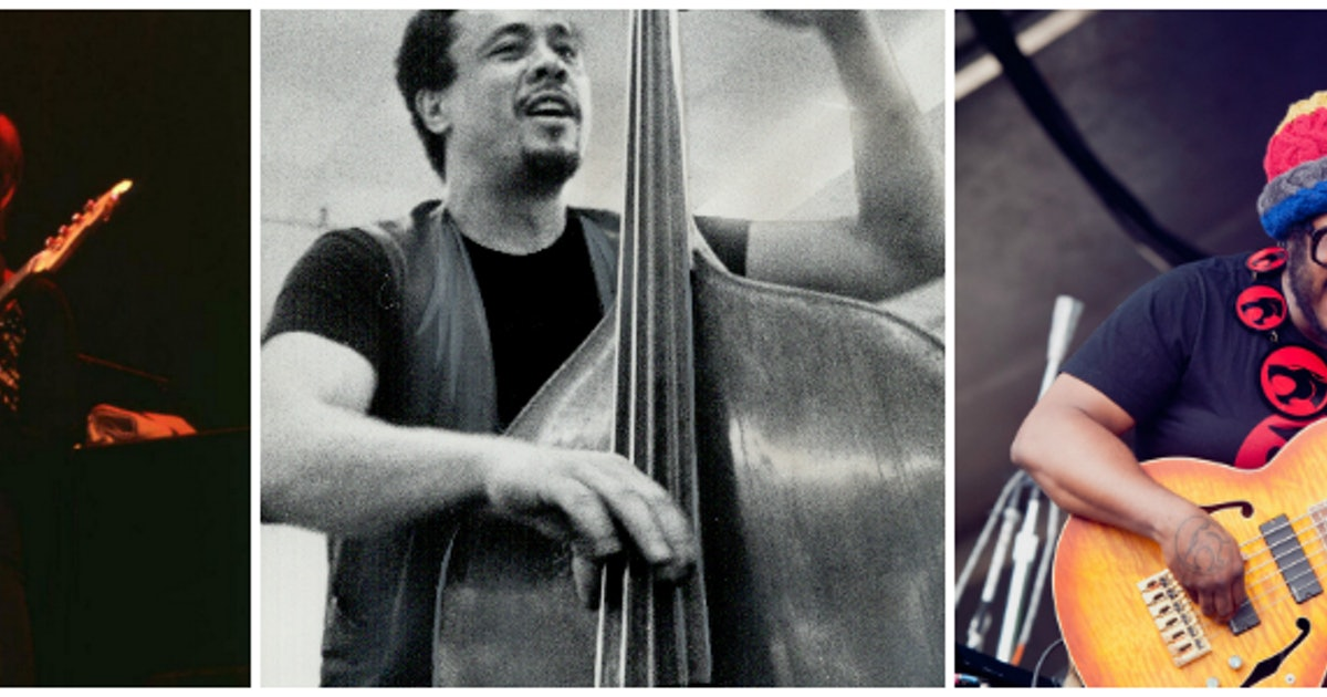 Science Suggests Bassists Are Far More Important Than Most People Realize