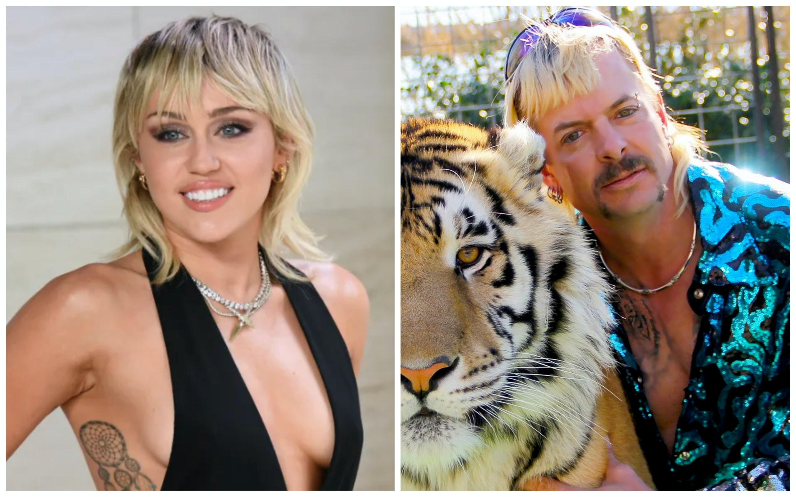 Miley Cyrus S Hair Is Drawing Comparisons To Tiger King Joe Exotic