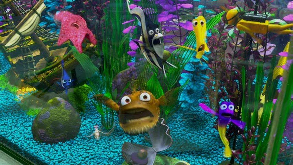 Finding Dory Almost Included These Beloved Finding Nemo