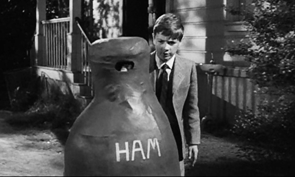 Image result for scout in ham costume