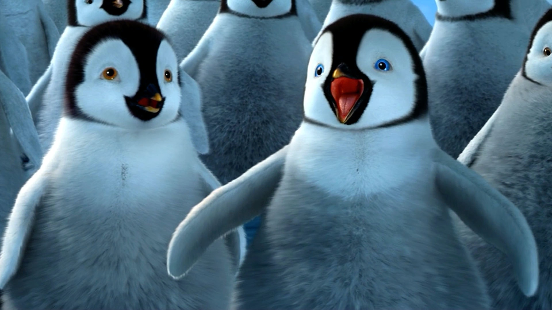 the one thing everyone should remember from 'happy feet'